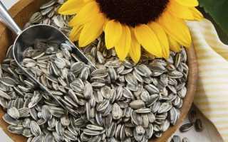 Очищенные семечки подсолнуха польза и вред