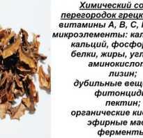 Лекарство из перегородок грецкого ореха на водке
