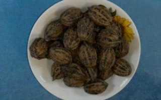 Маньчжурский грецкий орех