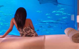 Как можно использовать аквариум не по назначению