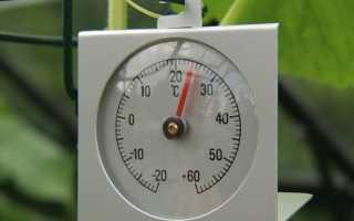 Сколько градусов в теплице