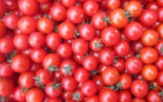 Томат вишня красная характеристика и описание сорта
