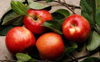 Компоты из яблок на зиму