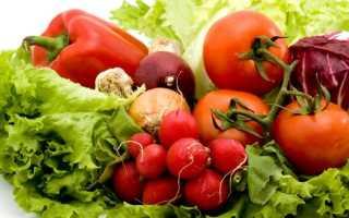 Что можно выращивать в теплице круглый год