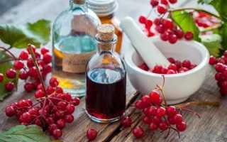 Калина красная рецепты на зиму заготовки калины