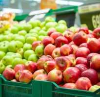 Желтые яблоки сорта