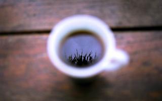 Как использовать жмых от кофе