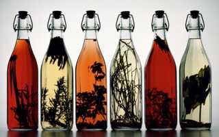 Как приготовить настойку на спирту