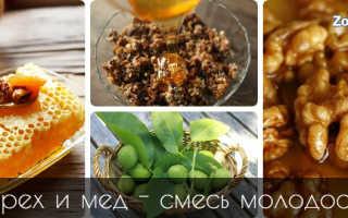 Грецкие орехи и мед польза и вред