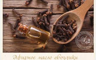 Масло гвоздики свойства и применение