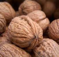 Как правильно прокалить орехи в духовке