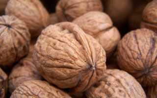 Как подсушить грецкие орехи без скорлупы