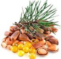 Польза кедровых орешков для организма человека