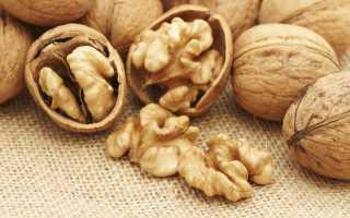 Чем полезна настойка из перегородок грецкого ореха