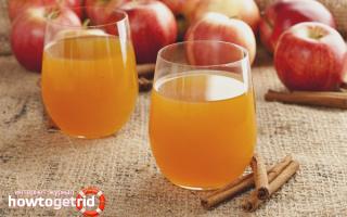 Сок из яблок в домашних условиях