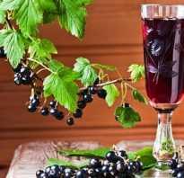 Смородина на спирту рецепт приготовления