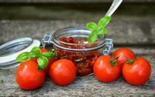 Посев рассады томатов в домашних условиях