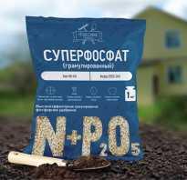 Двойной суперфосфат удобрение применение на огороде
