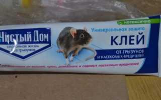 Чем отмыть клей для мышей от кота