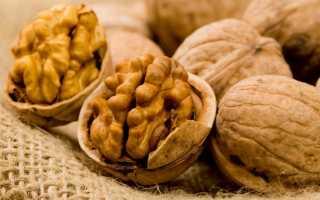 Польза грецкого ореха для человека