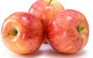 Яблоко гала фото