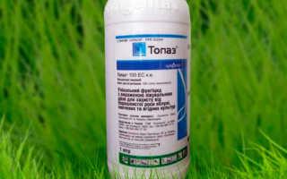 Препараты для борьбы с болезнями растений