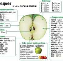 При каких заболеваниях нельзя есть яблоки