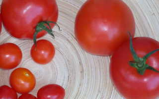 Влияние томатов на организм человека