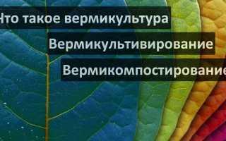 Вермикультура производство и использование