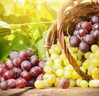 Виноградное варенье рецепты