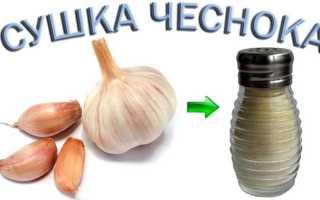 Как приготовить сушеный чеснок в домашних условиях