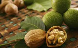 Перегородки грецкого ореха для мужчин