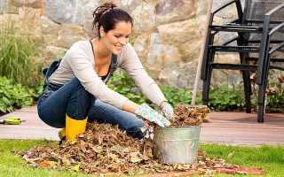 Осенняя обработка земли от болезней и вредителей