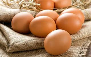 Яблочный уксус для кур несушек для яйценоскости